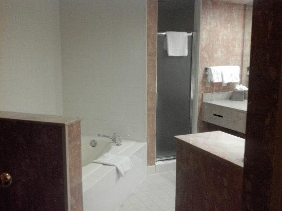 Hilton Phoenix Airport: Massive Bathroom in king one bedroom suite. Older jetted tub, large walk in shower