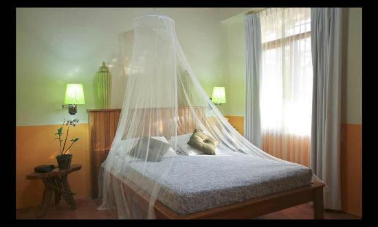 Hotel Paraiso Carlisa: filename__hotelparaisocarlisa10_jpg_thumbnail0_jpg
