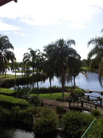 Mercure Gold Coast Resort: view from one of our function rooms