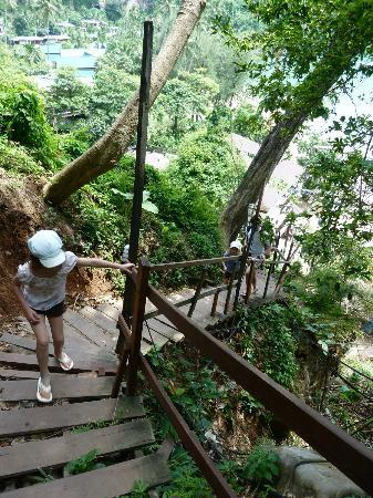 The Monkey Trail - Picture of Centara Grand Beach Resort ...