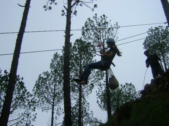 Pine Hills Eco Camp: Flying Fox (Zip Line)