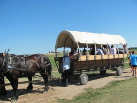 Ingalls Homestead - Laura's Living Prairie: wagon ride