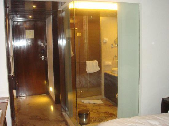 Ramada Powai Hotel and Convention Centre: Bathroom