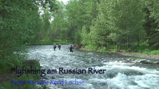 russian river alaska picture of cooper landing alaska tripadvisor