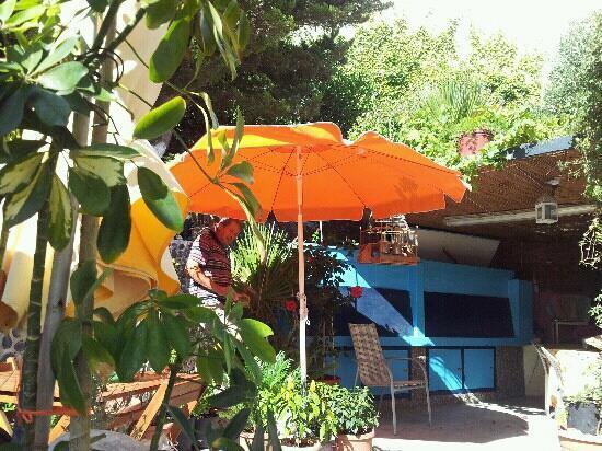 Villa Stella: georges dans le jardin....
