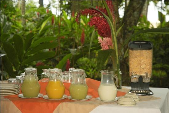 Hotel Ilan-Ilan Trails & Lodge: Jugos
