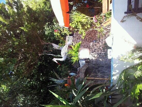 Villa Stella: jardin