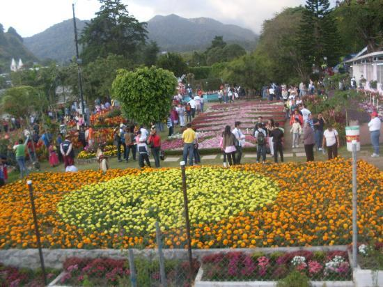 Feria de las Flores Boquete, Chiriquí, Panamá