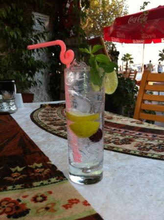 Ottoman Kebab House : best Gin&Tonic in town!