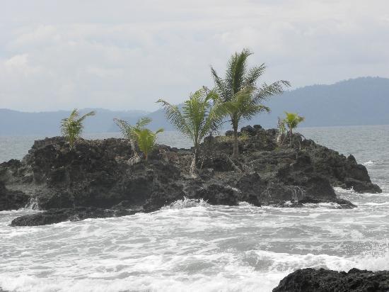 Punta Marenco Lodge: Pacific Ocean: Punta Marenco