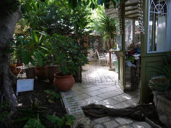 The Aigli: garden