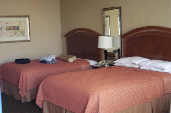 Royal Pacific Motor Inn: Unser Zimmer