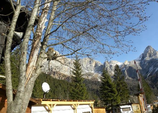 Camping Sass Maor: getlstd_property_photo