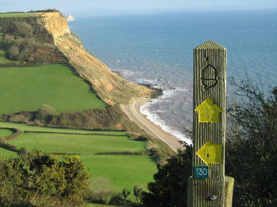 South West Coast Path National Trail The Coastal Near Sidmouth Devon