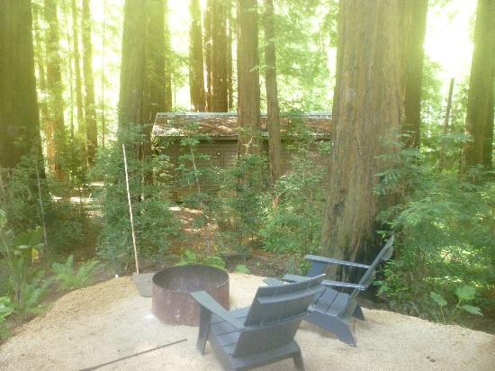 Glen Oaks Big Sur: our big backyard