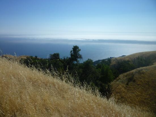 Glen Oaks Big Sur: On our hike in the Big Sur area