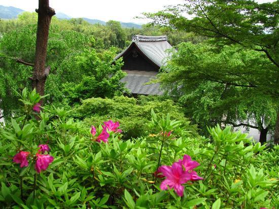 Tenryuji Temple: Tenryuji gardens