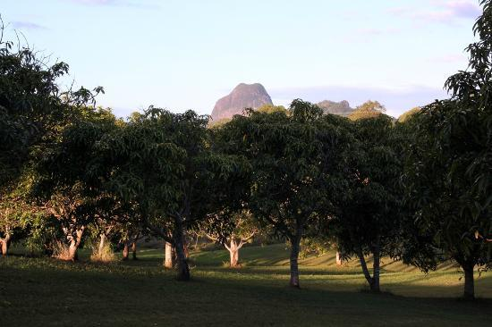 Glass on Glasshouse: Glasshouse mountains view from the terrace