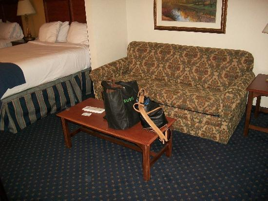 Holiday Inn Express Hotel & Suites Montgomery/Boyd Cooper Parkway: sofa