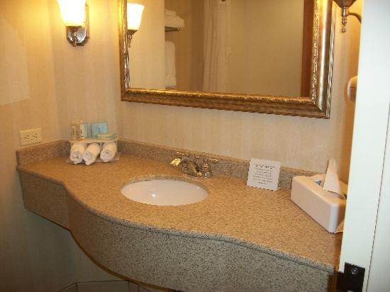 Holiday Inn Express Hotel & Suites Montgomery/Boyd Cooper Parkway : vanity