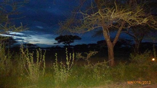 Ndutu Safari Lodge: What a view and sunset