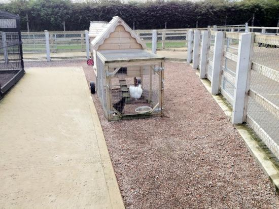 Tannaghmore Farm and Gardens: chicken house