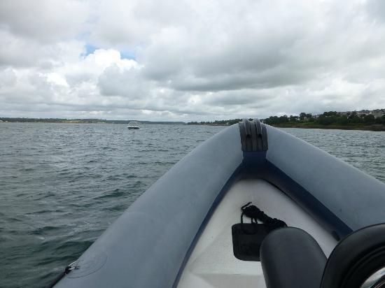 West Coast Ribs: Bit cloudy, but dry.