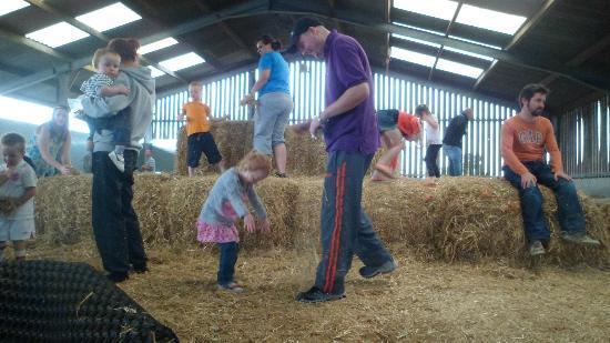 Wheelock Hall Farm: the hay bales in the barn