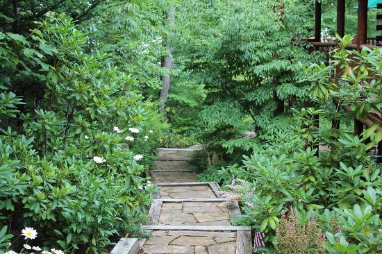 Good Timber Bed and Breakfast: path around lodge leading to Lake