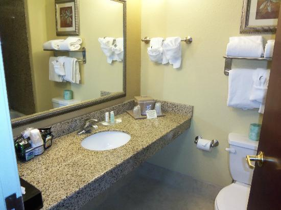 Comfort Suites Kings Bay Naval Base Area: Bathroom