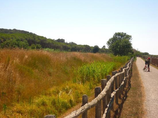 Agriturismo San Gabriele: un pezzo della pista ciclabile nel parco dell'uccellino