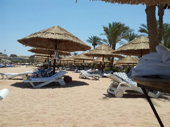 Maritim Jolie Ville Resort & Casino Sharm El-Sheikh: Great beach
