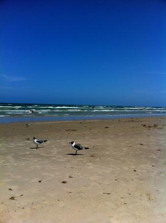 Malaquite Beach: must see beach