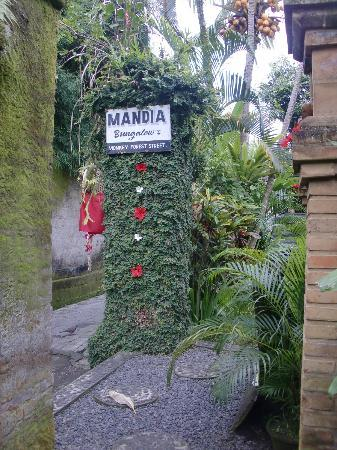 มันเดีย บังกะโล: Mandia Bungalows