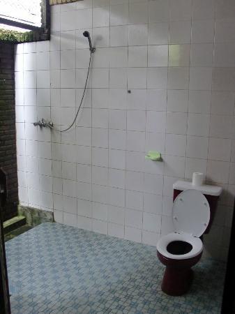 蔓迪亞平房酒店張圖片