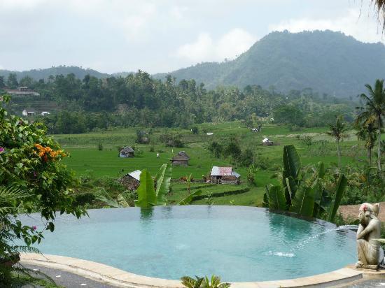 Surya Shanti Villa: Vue de la piscine principale