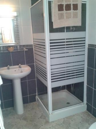 Ashburton House: En suite