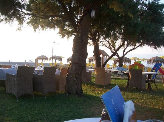 Kyano Beach Restaurant: under the tree