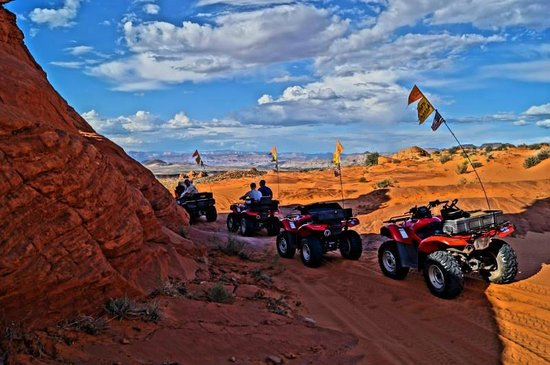 ATV and Jeep Adventure Tours : One of the shade spots on the trail.