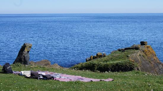 Bay House: A quiet place for a picnic, just across the bay from the house.