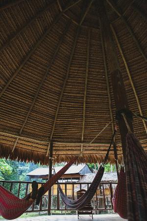Cumaceba Lodge: Hammock area