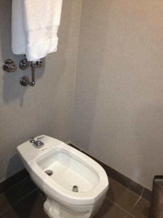 Hilton Toronto Airport Hotel & Suites: The bidet  was a surprise
