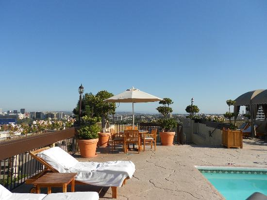 Le Montrose Suite Hotel: Rooftop Pool