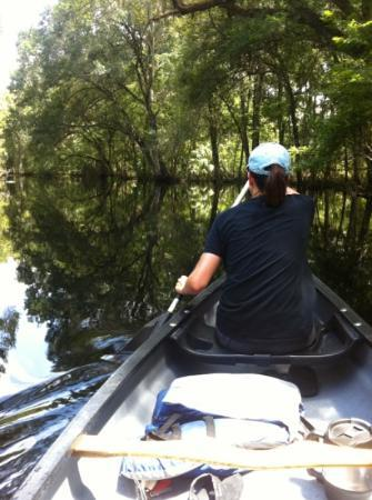 Hillsborough River : without a paddle