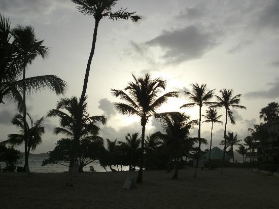 Sapphire Beach Resort: Sky over Sapphire