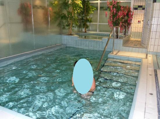 Logis Le Charlet: La piscine chauffée dans l'hôtel
