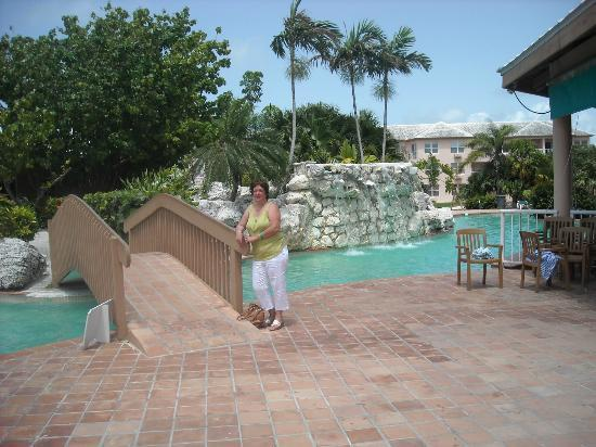 Ramada Plaza Fort Lauderdale: bridge to pool, water cascade at pool. front of pool, kids pool dirty.