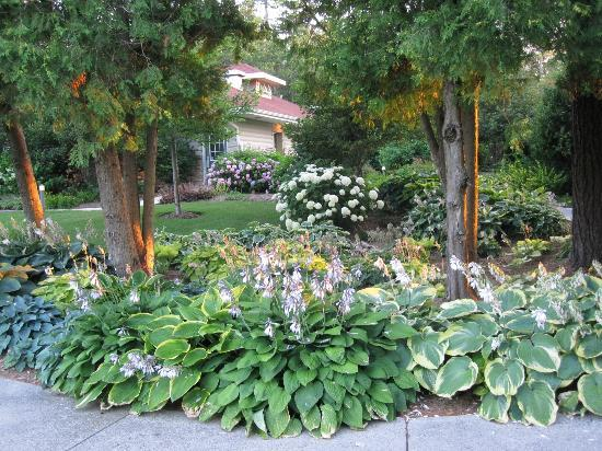 Gordon Lodge: Despite 2012 drought, plantings well maintained.