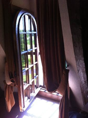 Chateau de la Menaudiere: окно в номере