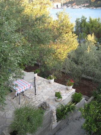 Hotel Villa Telenta: The garden with olive trees, lemon and pomegranate
